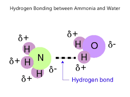 Hydrogen Bonding What Are Some Examples Of Hydrogen Bonds Socratic