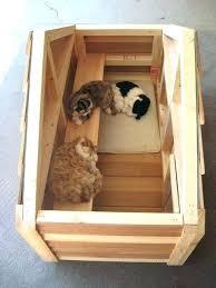 brilliant cat house plans outdoor ideas best