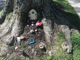 Tree-Trunk-Fairy-Gardens-Buffalo-NY-1