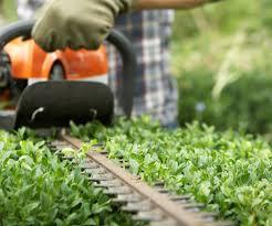 garden maintenance service. Plain Garden Garden Maintenance In Liverpool Inside Garden Maintenance Service