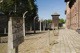 barbed wire fence concentration camp. Barb Wire Fences And Guard Tower In The Auschwitz I Former Nazi Concentration Camp; Auschwitz, Poland Barbed Fence Camp M
