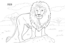 Free Online Coloring Pages For Kids Animals Drawings