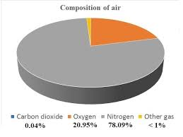 Draw A Pie Chart On Composition Of Air Showing Co2 O2 N2