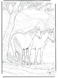 Detailed Horse Coloring Pages Mtkguideme