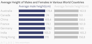 Tallness Chart What Is The Height Of The Average Man What Is The Average