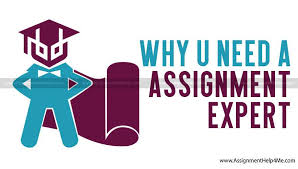 blog how to write assignment assignment tips and more why you need an assignment expert