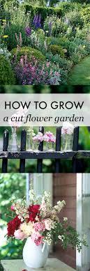 Small Picture How To Grow A Cut Flower Garden Cut flower garden Beautiful