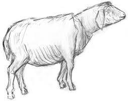 Resultado de imagen de figura del Cordero de granja