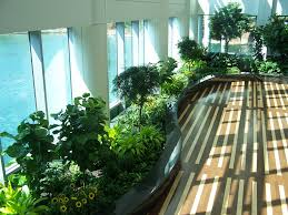 greenery office interiors. interior plants greenery office interiors t