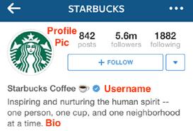 instagram profile 2015. Plain Profile On Instagram Profile 2015