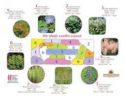 Small Picture Rain garden recipes StarTribunecom