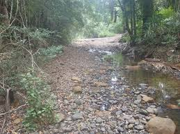 Upper Byron Creek - Aussie Bushwalking