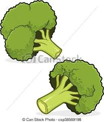 broccoli clipart. Exellent Broccoli Broccoli  Csp38569198 With Clipart E