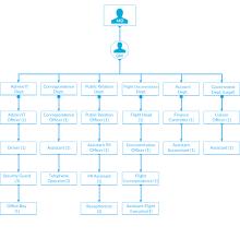 Organizational Chart Blue Bird Overseas Pvt Ltd