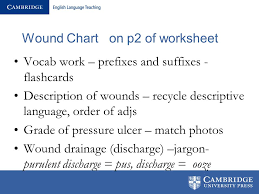 Wound Charting Examples Wounds Charts And Medication Ppt Video Online Download