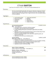 Media Resume Template social media resume template best online marketer and social media 1