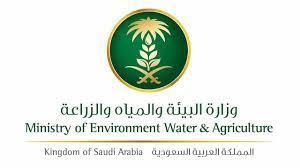 للمزارعين والنحالين.. كيف تحصل على تصريح تنقل من وزارة البيئة والمياه  والزراعة؟