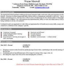 resume formats online   how to make a resume for a job for a teenagerenglish cv examples barman