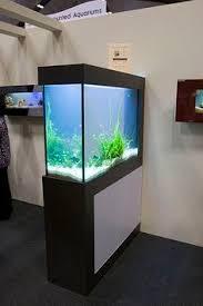 office aquarium. aquarium room divider idea office
