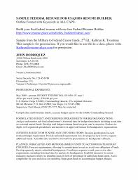 Resume Sample New Example Of Federal Government Resume Expense