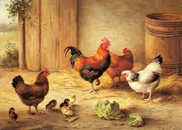 real farm animals chickens. Plain Animals 5 Chickens In A Barnyard Farm Animals Edgar Hunt And Real Farm Animals I