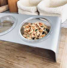 elevated feeder with glass bowls nice sy design with glass bowls and angled so it s tilted towards your pet for better eating
