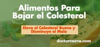 Alimentos Para Bajar El Colesterol 1