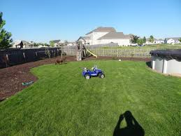 Garden Design With Landscaping Ideas For Backyard Privacy Cont Tool  Backyards Q