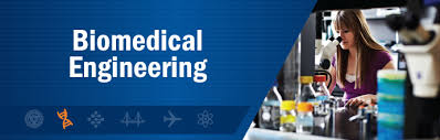 Image result for Biomedical Engineering