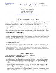 Gurtel Blendend Six Sigma Black Belt Resume Examples Of Resumes