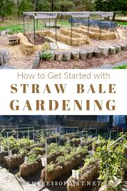 get started with straw bale gardening