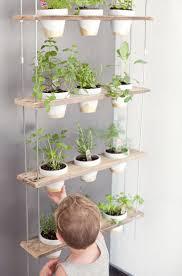 Herb Garden For Kitchen 17 Best Ideas About Hanging Herb Gardens On Pinterest Indoor