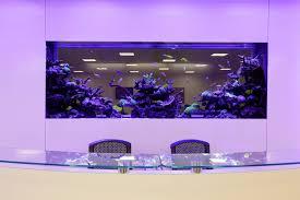 office desk aquarium. Fish Tank Office Phenomenal Image Inspirations Desk For Your Home Aquarium L