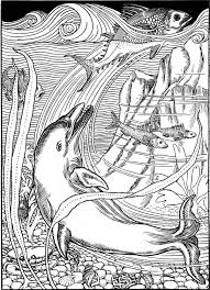 Small Picture Free Dolphin Coloring Pages Gianfredanet