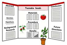 Tomato Science Fair Project My Chicago Botanic Garden