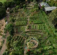 Small Picture 133 best Permaculture design images on Pinterest Gardening