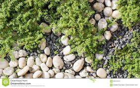 Design A Rock Rocks Garden Background Top View Stock Image Image Of