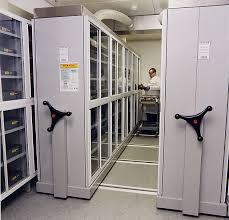 shelving in basement mobile artifact storage