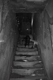 Dark Creepy Basement Fresh At Amazing Dark Creepy Basement Plan - Creepy basement stairs