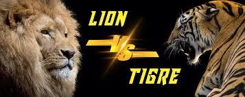 """Résultat de recherche d'images pour """"tigre vs lion"""""""