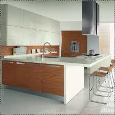 Metal Kitchen Storage Cabinets Kitchen Room Witching Modern Style Kitchen Interior Brown Wooden