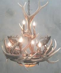 moose chandelier medium size of chandeliers antler chandeliers elk for moose antler chandelier gallery