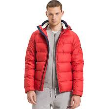 Quilted Down Jacket | Tommy Hilfiger & Quilted Down Jacket Adamdwight.com