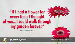 Love Flower Quotes Love Flower Quotes And Lord Quotes On Flower And Love 100 Also Love 14