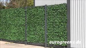 Eurogreens Kunstpflanzen Efeu Hecke Youtube Sichtschutz Und Sichtschutzhecken