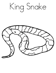 Small Picture Innovative Snakes Coloring Pages Gallery Kids 8367 Unknown