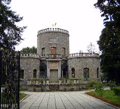 victorian home plans castle home plans