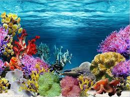 Aquarium Backgrounds Single Side Aquarium Fish Tank Decorative Wall Background Paper
