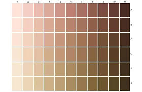 Brown Color Chart Wheel Makeup Color Chart Whatsappindir Co