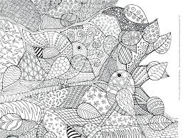 Adult Bird Coloring Pages With Humming Bird Coloring Pages Glass